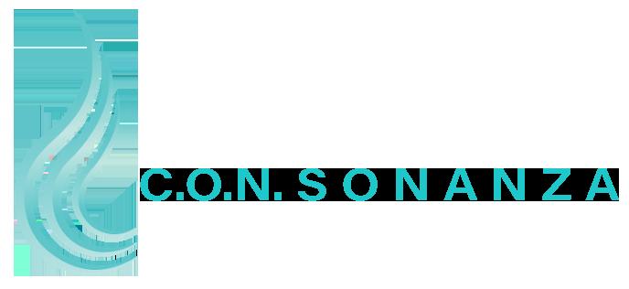C.O.N.SONANZA